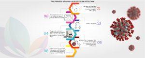 covid 19 corona virus detection kit